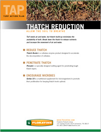 Thatch Reduction